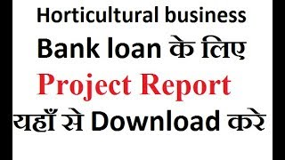 sample project report for bank loan pdf