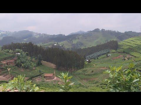 Rwanda : bras de fer entre HRW et le gouvernement