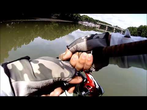 Casting Ikan Bulan Sungai Merbok Yang MENGAMOK! | Ultralight Fishing