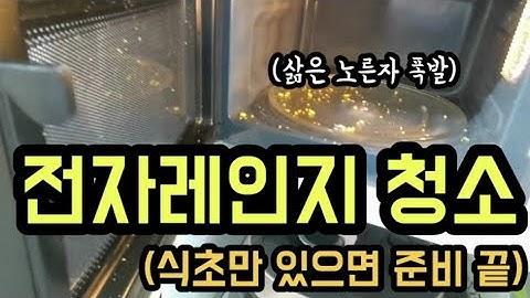 식초로 전자레인지 청소하는 법(feat.삶은 노른자 폭발)