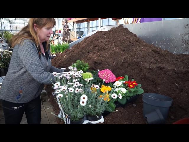 Hoe vul ik mijn plantenbakken en potten in het voorjaar?