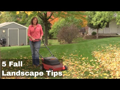 What to do in Your Landscape in Fall - 5 Easy Steps