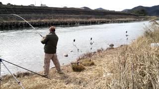 Winter carp fishing  japan(津保川、冬の鯉釣り)