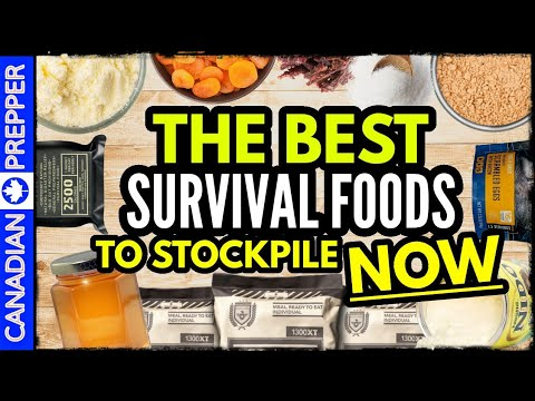 10 Best Survival Foods to Stockpile for Disaster