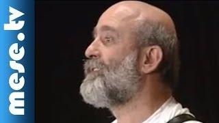 Kaláka együttes - Kányádi Sándor: Dél keresztje alatt (dal, koncert részlet)
