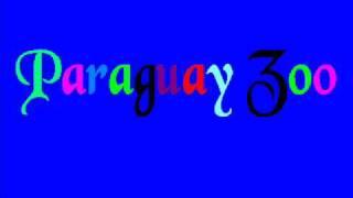 paraguay zoo   man gribas kliegt