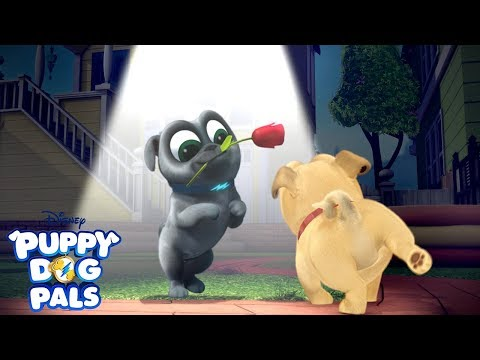 Don't Blink!   Playtime with Puppy Dog Pals   Disney Junior