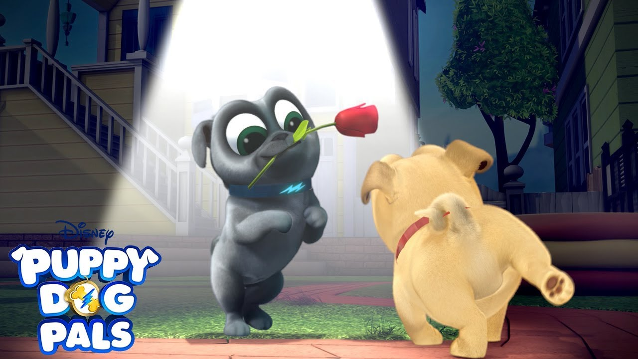 Don T Blink Playtime With Puppy Dog Pals Disney Junior Youtube