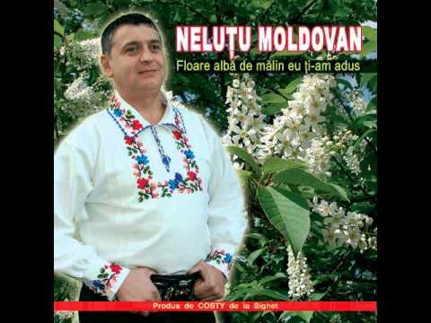 Nelutu Moldovan - Nu am nici un leu