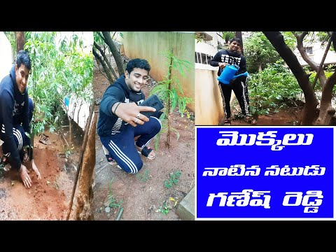 Actor Ganesh Reddy Planted Saplings Following TRS MP Santosh Kumar Green Challenge | GT TV