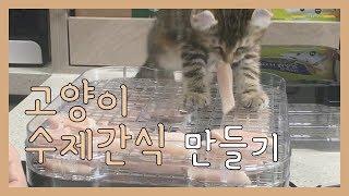고양이 수제간식 닭가슴살 육포를 만들어봤어요! | 아기…