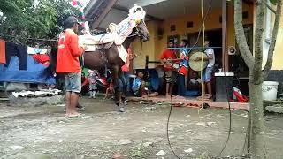 Musik tanji kuda renggong putra siliwangi
