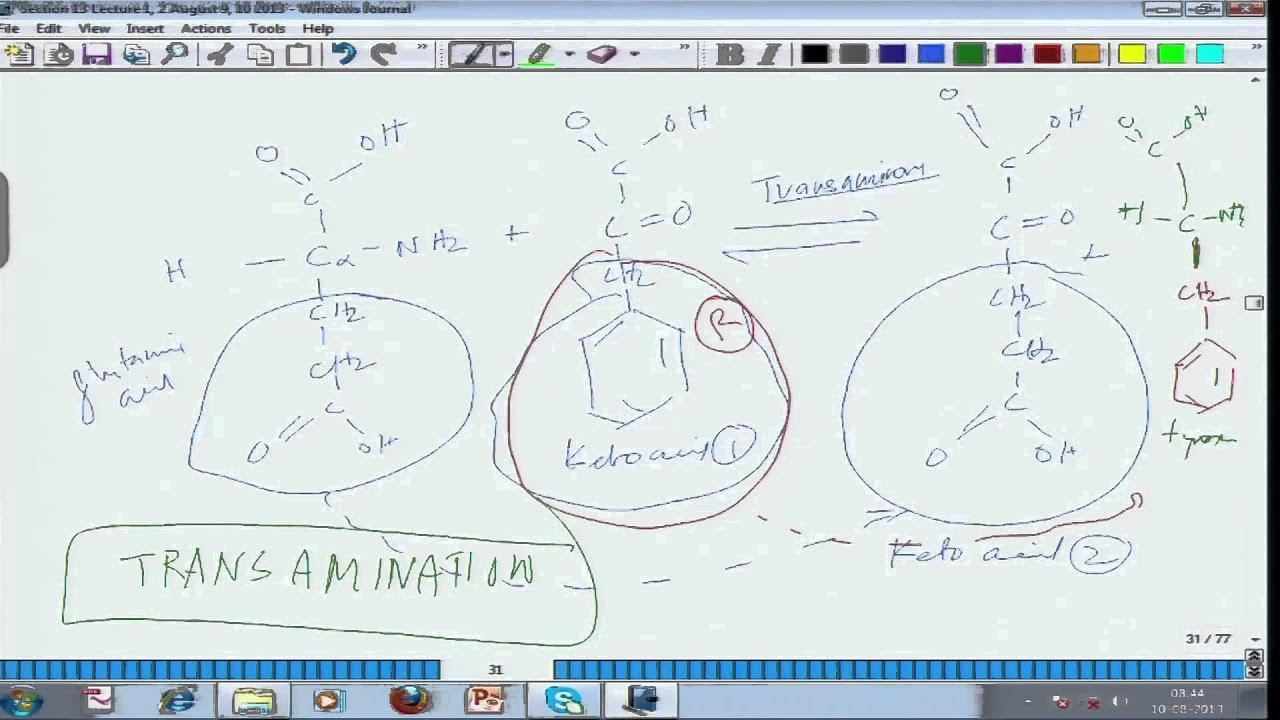 Mod-01 Lec-21 Animal Physiology