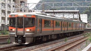 313系8000番台B202編成【静岡車両区確認作業に伴う回送】