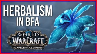 Battle for Azeroth Herbalism | BFA Profession Review