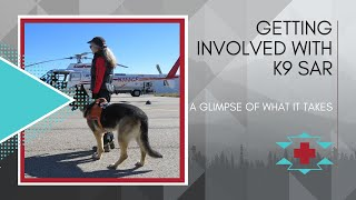 K9 SAR: What's Involved With Getting Involved