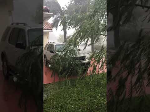 Video during Hurricane Irma (Intense Winds about 1 min in)- Davie, Fl