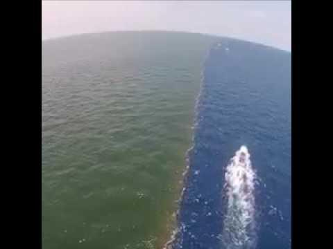 الفاصل بين نهر النيل والبحر المتوسط بحر مالح والنهر العذب Youtube