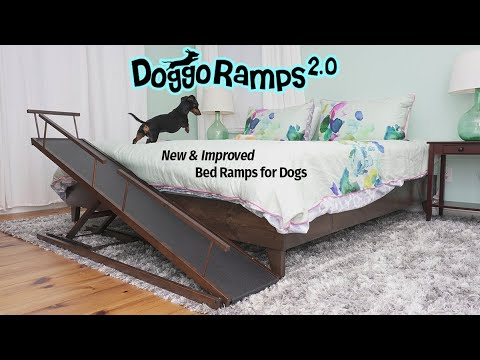 DoggoRamps 2.0 - The New & Improved Bed Ramps for Dogs!