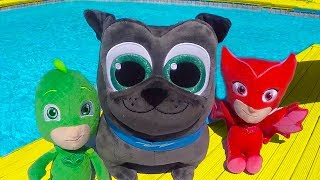 PJ Masks Swimming Pool Party with Puppy Dog Pals Rolly and Bingo