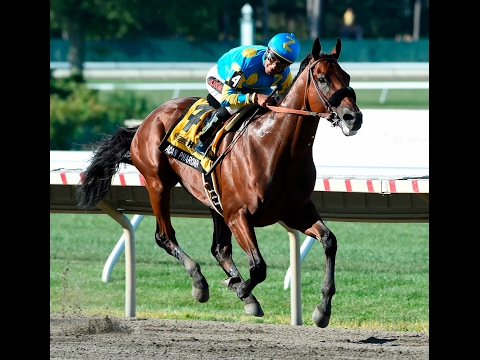 American Pharoah - A Horse of a Lifetime