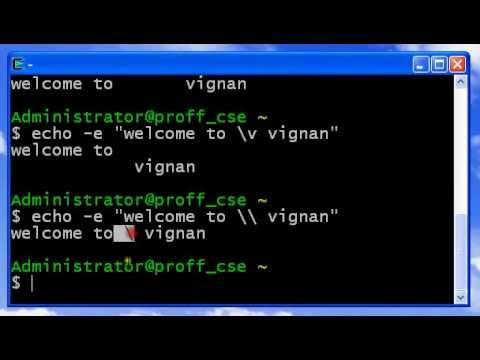 UNIX Echo (print message)