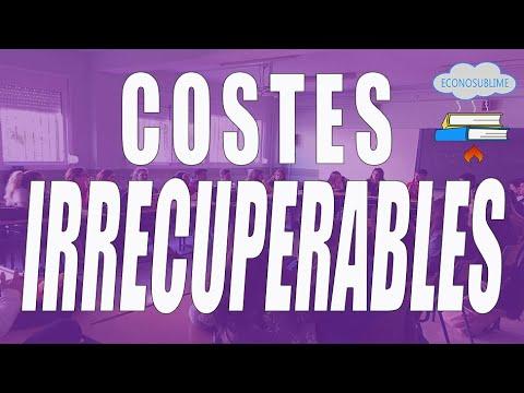 6.b SEGUNDO PRINCIPIO: LOS COSTES IRRECUPERABLES: A lo hecho, pecho.