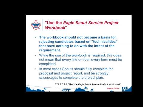 Approving Eagle Projects