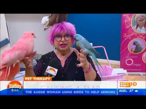 Kris's Feathered Friends on The Today Show Ch9 8/1/18