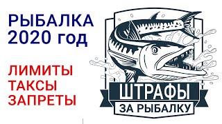 5 штрафов за рыбалку в 2020 году за превышение лимита, размера рыбы и снасти