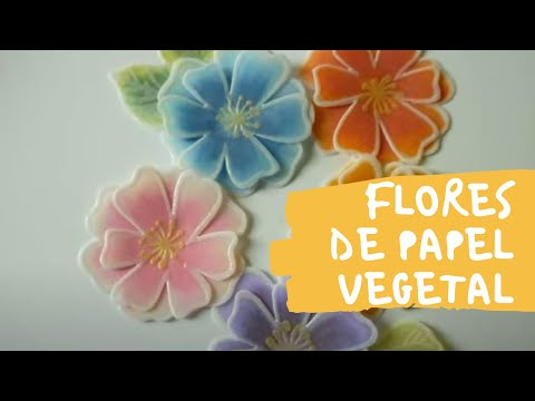 Vellum paper flowers gallery flower decoration ideas vellum paper flowers gallery flower decoration ideas vellum paper flowers flores de papel vegetal youtube vellum mightylinksfo