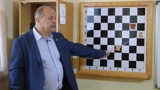 Урок шахмат №9. Техника матования одинокого короля одной ладьёй.