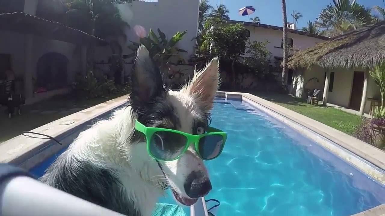 Summer Fun in Mexico