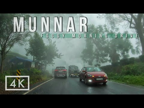 Download Misty Morning Drive to Munnar Hills in Kerala | 4K Ultra HD Driving video in India