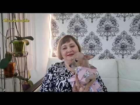 видео: Мои процессы вышивки за ноябрь 2017 г