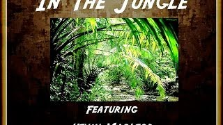 01 MUSIC MATTERS TITLED In The Jungle FEATURING Kevin MacLeod, royalty free music