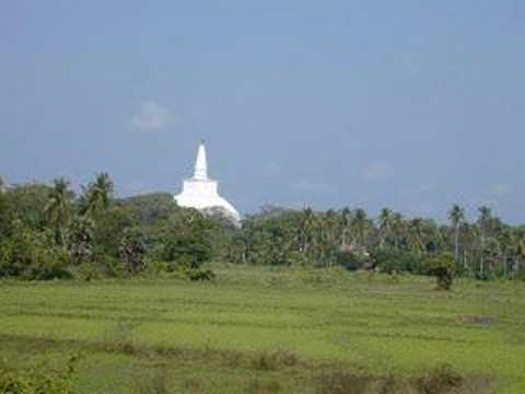 Buddhism and its historical monuments in Sri Lanka