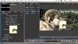 How to do Motion Tracking in Motion 5