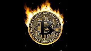 Как зарабатывать биткоины - Курс Биткоин Миллионер 2.0