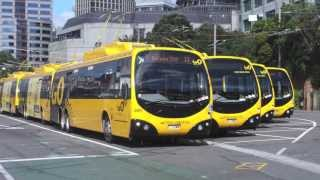 Wellington Trolleybuses in Rain and Shine