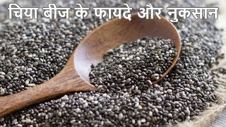 चिया बीज के फायदे और नुकसान |  Benefits and disadvantages of Chia seed