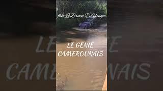 CAMPAGNE ELECTORALE:L'INCONSCIENCE DES FRANCOPHONES/MANGE POUR 1JOUR ET GALERE POUR 364!!!