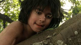 Книга джунглей 2016 FULL HD на русском0015