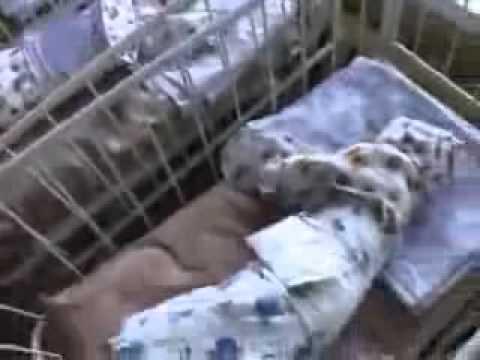 Женщина из Курска родила сразу 10 детей !!
