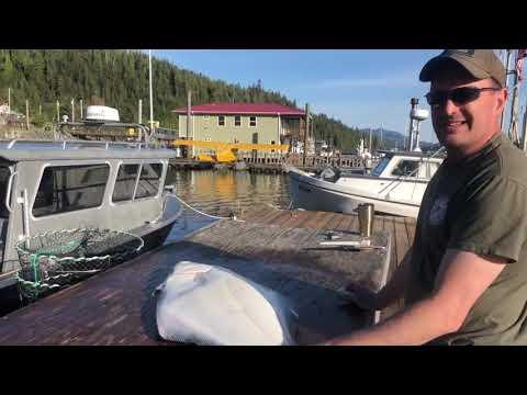 Catching & Processing Alaskan Halibut With Anderson Lodge Alaska