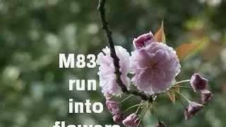 M83 - Run Into Flowers (abstrackt keal agram remix)