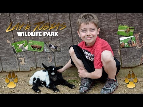 Our Adventure To Lake Tobias Wildlife Park!!