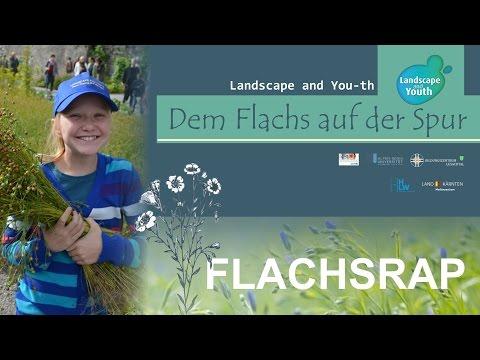 FLACHSRAP