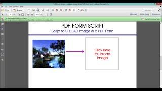 Adobe PDF form Script to Upload images in PDF Form