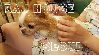 Самое милое место в мире: BAU HOUSE, SEOUL
